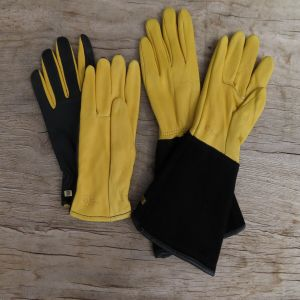 Gold Leaf Gloves & Gauntlets